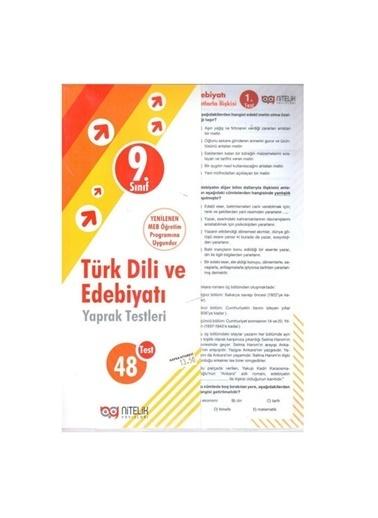 Morhipo kitap Sınıf 9 Türk Dili ve Edebiyatı Yaprak Te Renkli